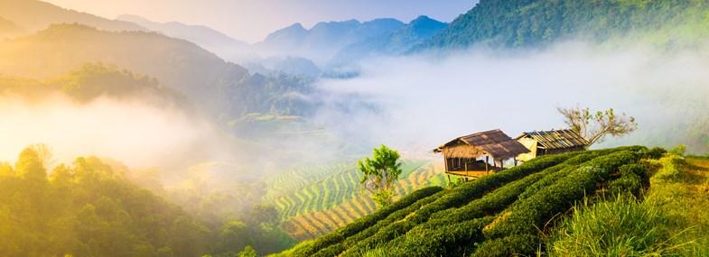 3 temples à découvrir en Thaïlande